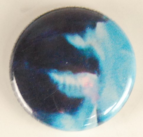 photo button, photo pin-back button